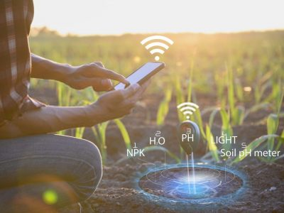 Artificial Intelligence for optimising pest control