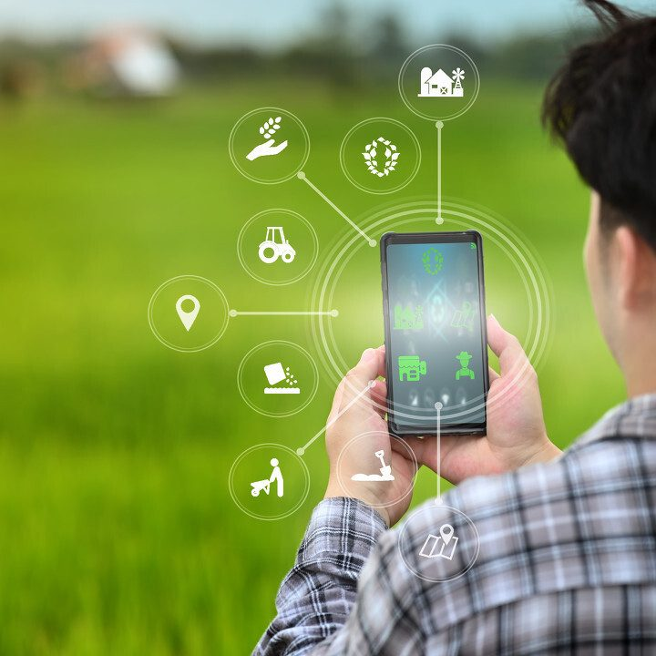 A male farmer is working in the field his using a mobile phone with Innovation technology for smart farm system.