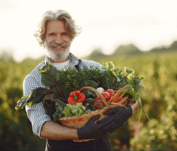 close-up-of-old-farmer-holding-a-basket-of-vegetables-the-man-is-standing-in-the-garden-senior-in-a-black-apron