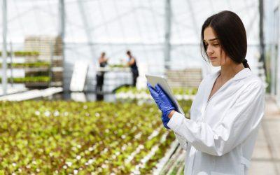 Bioeconomy on the spotlight: turning agri-food waste into profit