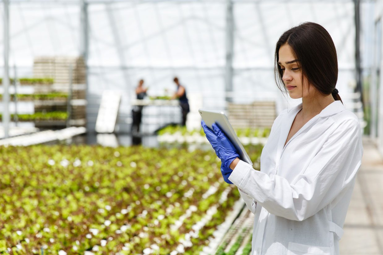 female-researcher-reads-information-from-tablet-standing-greenhouse